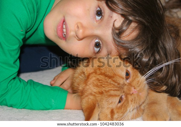 little boy playing with cat