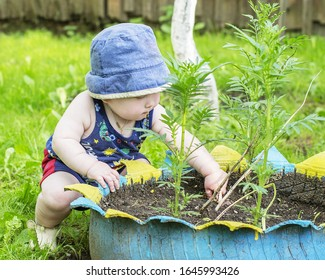 Little boy playing in a flower bed
