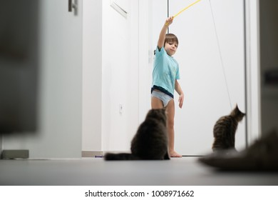 Little boy playing with his cat enjoying at home