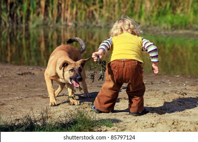 Little boy playing with his dog
