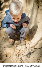 A little boy is playing in a large sandbank excavation, shows a small lizard