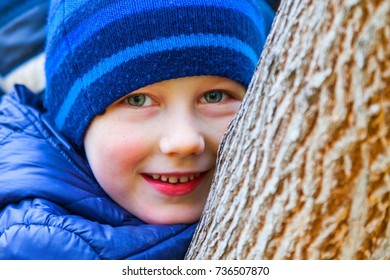 little boy is playing on a tree in an autumn park