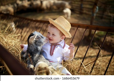 The little boy plays with the goatling in  hay