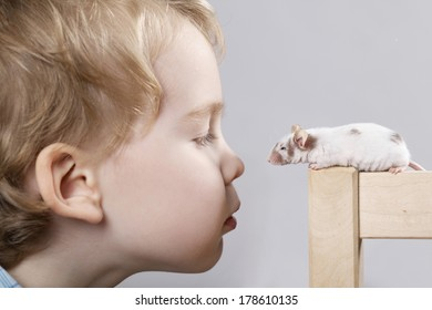 little boy plays with mouse