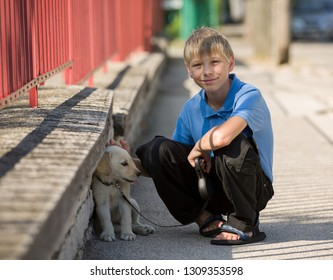 Little boy plays together with his puppy golden retriever dog outdoor at street, next to a red fence.