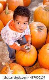 Little boy in a pumpkin patch.