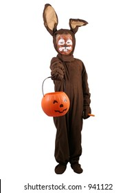 A little boy in a rabbit costume trick or treating.