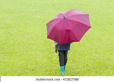 Little boy with red umbrella in the rain. Back view