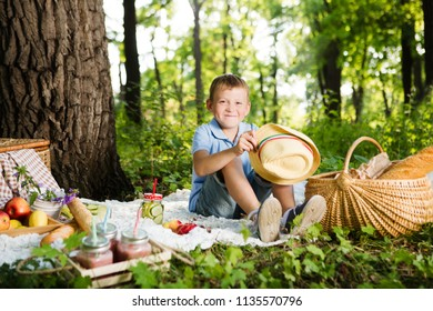 little boy resting and eating in park on picnic. Happiness summer weekend concept.