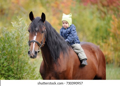 A little boy is riding a horse