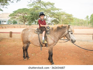 Little boy riding horse pony