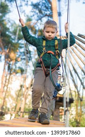 Little boy in a rope park. Active physical recreation of the child in the fresh air in the park. Training for children.