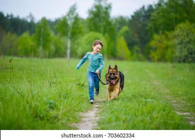 a little boy runs through the green meadow with his big German Shepherd dog. The wind blows his hair