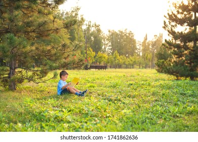 Little boy a schoolboy in a park at sunset reads a book. A intelligent child in a blue shirt with a yellow book in the park sits on the grass at sunset. Distance learning has ended.