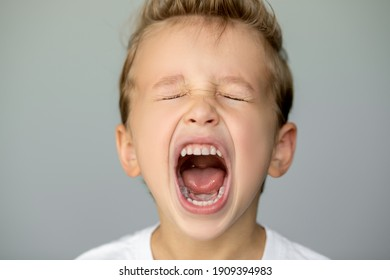 little boy screams with closed eyes. Detached young man on a gray background opened his mouth wide, white even teeth
