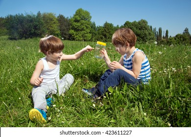 Little Boy Showing His Twin Brother A Butterfly In Glass Jar While Sitting In A Grass At Sunny Day