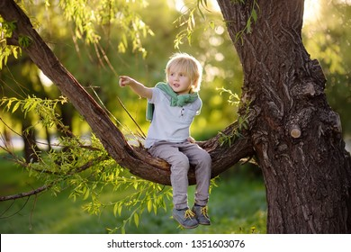 Little boy sits on a branch of a big old tree and points with his finger. Child's games. Active family time on nature. Hiking and adventure with little kids.
