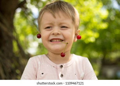 little boy sitting in the garden holding a cherry in his hands