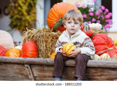 Little boy sitting on big tractor full with pumpkins on pumpkin patch on farm