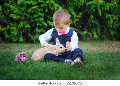 little boy sitting on grass with rabbit in the summer Park