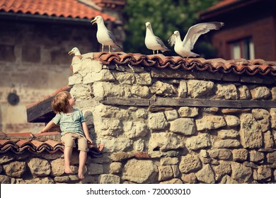 Little boy sitting on the wall and looking on a seagulls. Nessebar, Bulgaria. Image with selective focus and toning.