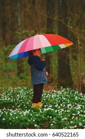 little boy in spring forest with umbrella