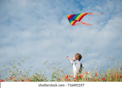 little boy standing among flower field holding colorful kite flying in air