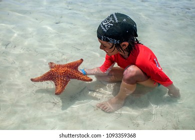 Little boy with a starfish on the sea