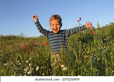 A little boy in a striped blue raglan runs happily spreading his hands across the field with wildflowers.