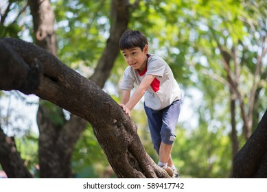 Little boy trying to climbing on the tree