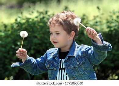 Little boy with two dandelions
