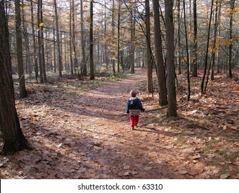 little boy walking alone in a forest on a path in autumn