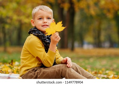 a little boy walks in nature in autumn, a schoolboy in the autumn Park in yellow leaves