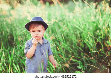 a little boy walks on the green lawn. The child plays outdoors. soft focus