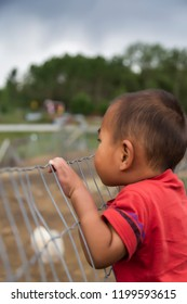 A little boy is watching animals over the fence in farm.
