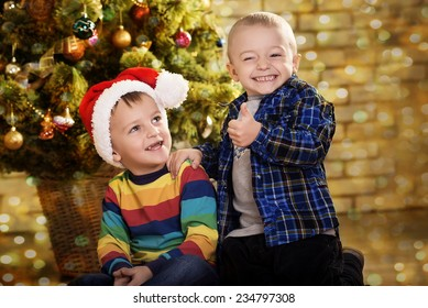 Little boys near a Christmas tree. Children in cap of Santa