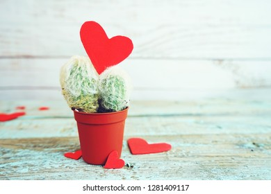 Little cactus with red hearts