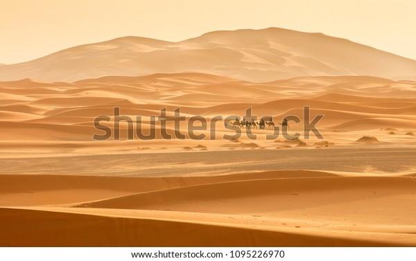 маленький караван, катаясь по пустыне между дюной в Марокко