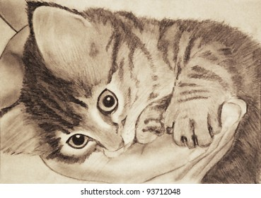 Little cat digital drawing