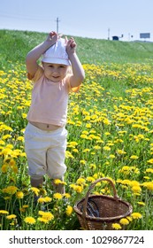 Little Caucasian child playing in green grass meadow in yellow flowers in summer time