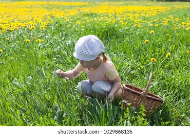 Little Caucasian girl sitting in green grass meadow with a small basket, summer time