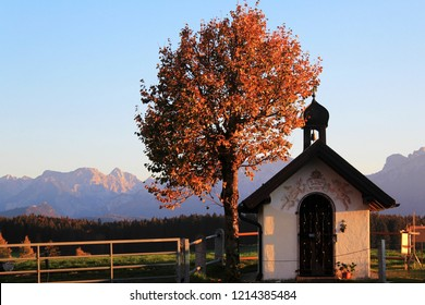 Little chapel next to a tree with beautiful autumn foliage, Alp mountains in the background, Bavaria
