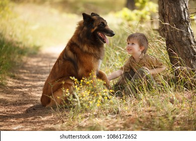 a little child with a big dog are best friends