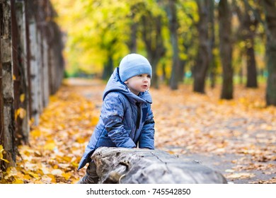 Little child boy 1 years old walks in the park on fallen colorful leaves in autumn day