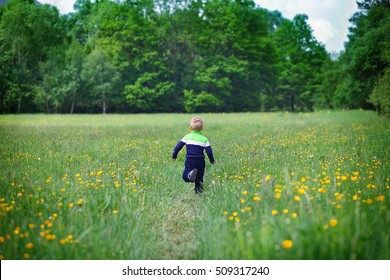 little child, boy in greed-blue shirt and blue pants, running on the field of dandelions, greenery