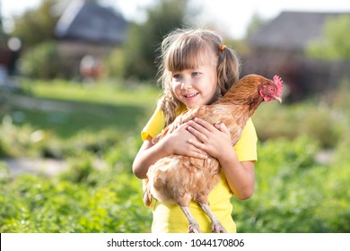Little child girl is holding the hen on the farm