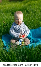 Little child in the park on the green grass