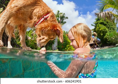 Little child play with fun and train golden labrador retriever puppy in swimming pool - jump and dive underwater to retrieve shell. Kids games with family pets and popular dog breeds like companion.