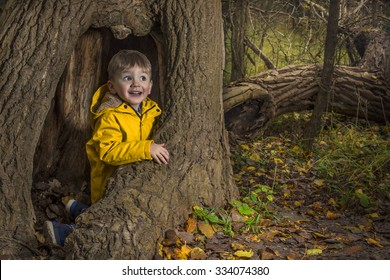 Little child playing in an autumn forest