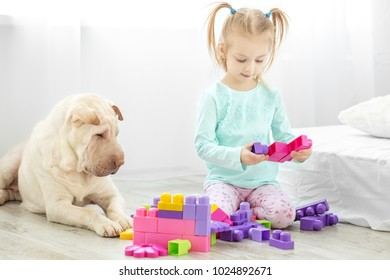 A little child is playing with developing toys in the room. The dog lies. The concept of lifestyle, childhood, upbringing, family.